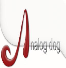 analog dog